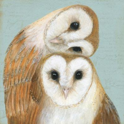 "Greetings card ""Two Barn Owls"" 16x16cm"