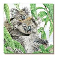 Greetings card, jungle koalas