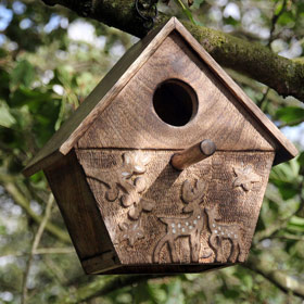 Bird and Bug Boxes