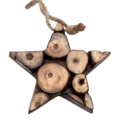 Hanging star, decorative wood twig slices