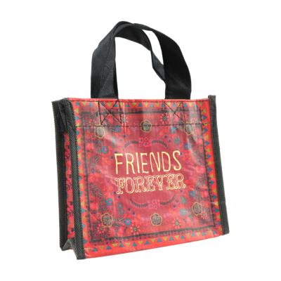 Gift bag made from recycled plastic bottles, Friends Forever