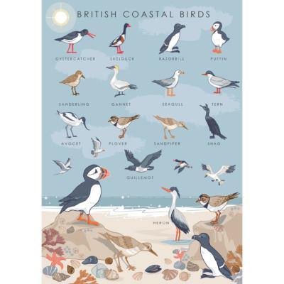 "Greetings card ""British coastal birds"" 12x17cm"