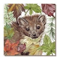 Greetings card, pine marten