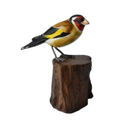 Goldfinch on tree trunk