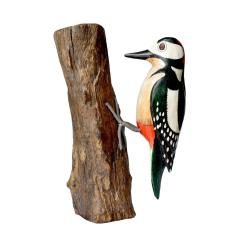 Spotted woodpecker on tree trunk