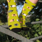 Bamboo socks, sheep green, Shoe size: UK 3-7, Euro 36-41