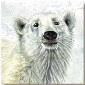 Greetings card, polar bear