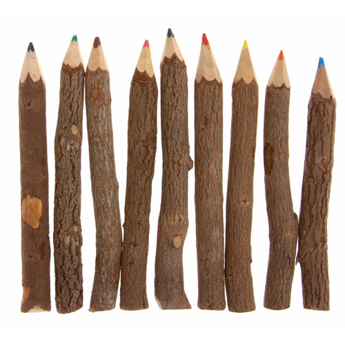 Twig colour pencils. pack of 10, 13cm