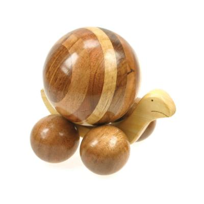 Large mixed wood snail