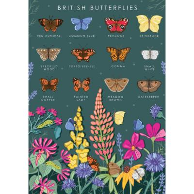 "Greetings card ""British butterflies"" 12x17cm"