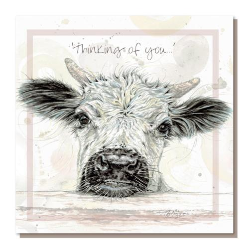 "Greetings card, white park calf, ""Thinking of you"""
